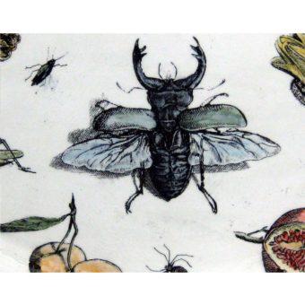 flora-fauna-detail