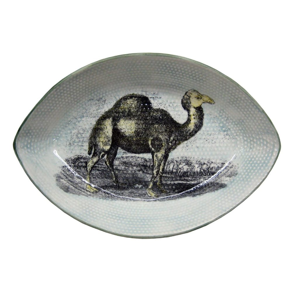 camel plate